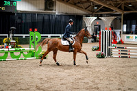 2020 - Spruce Meadows - FCII - Fri, Feb 21 - 02119