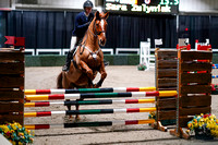 2020 - Spruce Meadows - FCII - Sat, Feb 22 - 04306