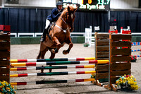 2020 - Spruce Meadows - FCII - Sat, Feb 22 - 04308