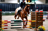 2020 - Spruce Meadows - FCII - Sat, Feb 22 - 04311