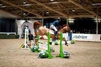 2020 - Spruce Meadows - FCII - Sun, Feb 23 - 07236