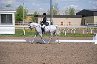 293 - Dressage Seat Eq JTR