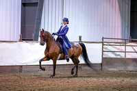 139 - Morgan Classic Pl Saddle Junior Rider