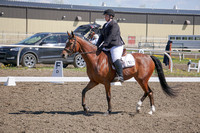 287 - Dressage Training Level ATR