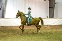 231 - American Saddlebred 3-Gaited Eng Country Pl Novice Rider