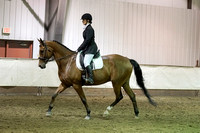 318 - HA Sport Horse Under Saddle Limit Horse