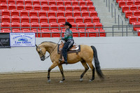 277 - HA Western Pl Open Geldings