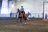 145 - American Saddlebred Park Pl Junior/Novice Horse