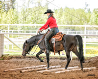 237A - Arabian Ranch Horse Riding Open