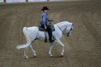 415 - Arabian Ranch Horse Riding Open