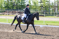 286 - Dressage First Level Open