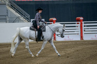 417 - Arabian Ranch Horse Riding ATR