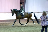 169 - Arabian Hunter Pl Open
