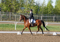 282 - Dressage Training Level Open
