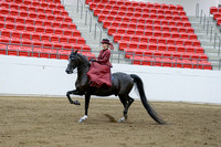 341 - HA Ladies Side Saddle Eng/West ATR