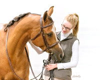 215 - Arabian Sport Horse Geldings Hunter Type