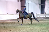 158 - American Saddlebred Eng 3 Gaited Show Pl Junior Rider