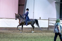 142 - American Saddlebred Eng 3-Gaited Country Pl Junior Rider