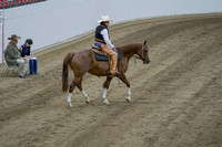 418 - HA Ranch Horse Riding ATR